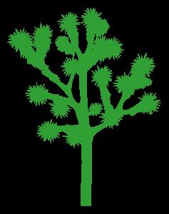 Dekorativ ağaclar
