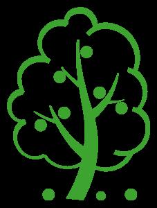Meyvə ağacları